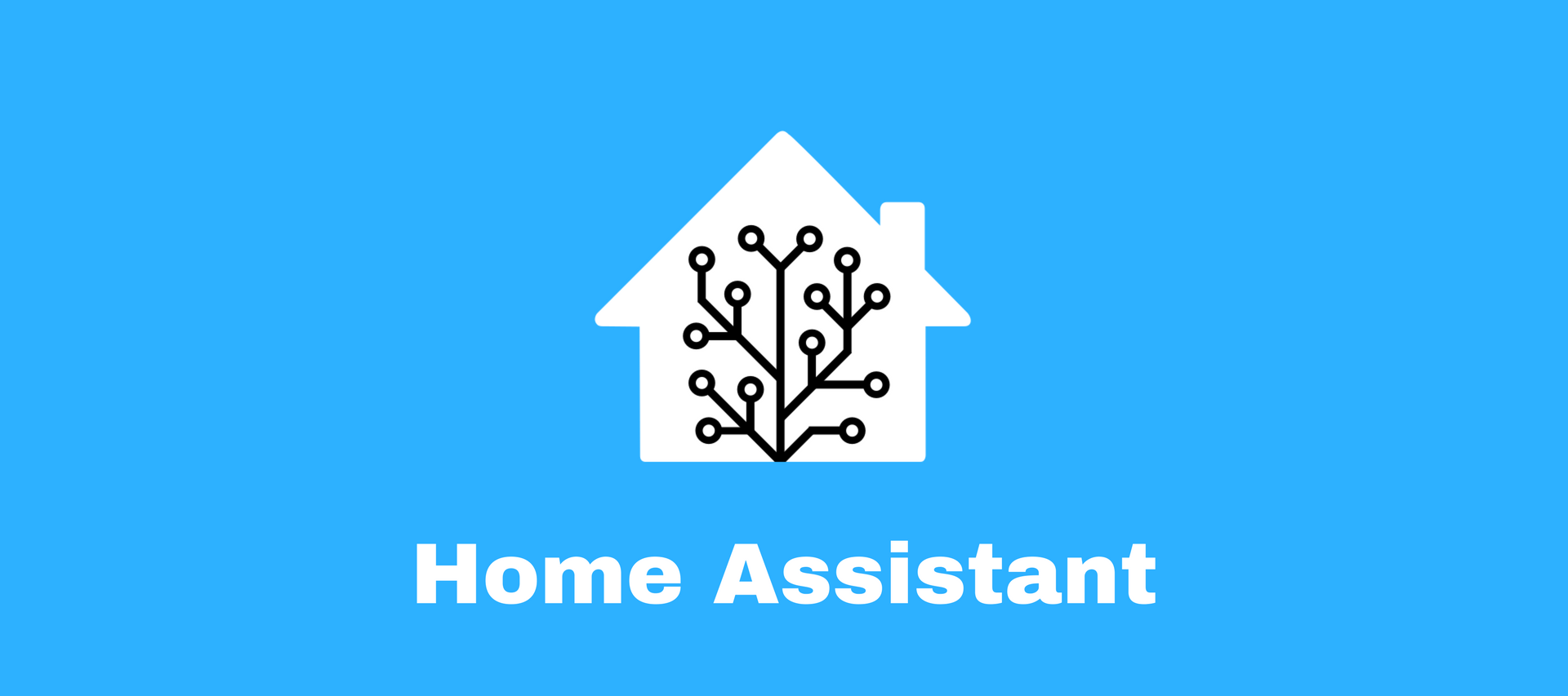 Hass.io Home Assistant